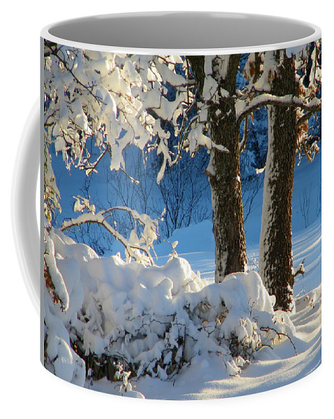 Winter Coffee Mug featuring the photograph First Light by Gale Cochran-Smith