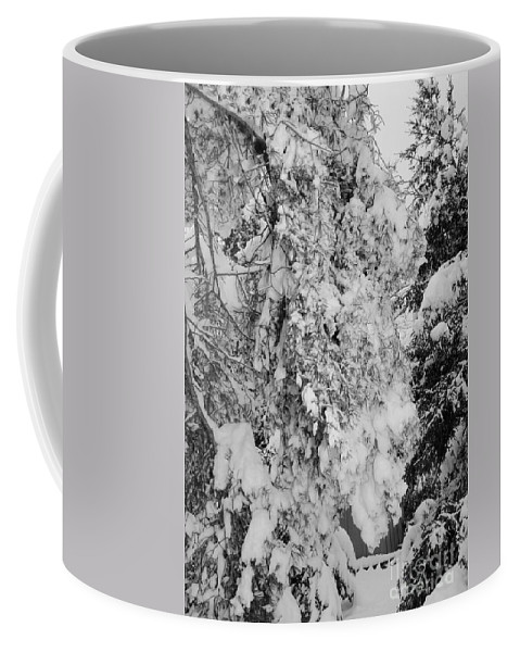 Snow Coffee Mug featuring the photograph First Snowfall by Kathleen Struckle