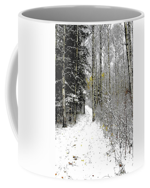 Winter Coffee Mug featuring the photograph First Snowfall by Nelson Strong
