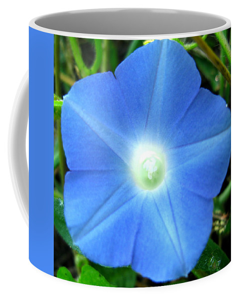 Blue Flower Photograph Coffee Mug featuring the photograph Five Point Star Morning Glory by Brittany Horton