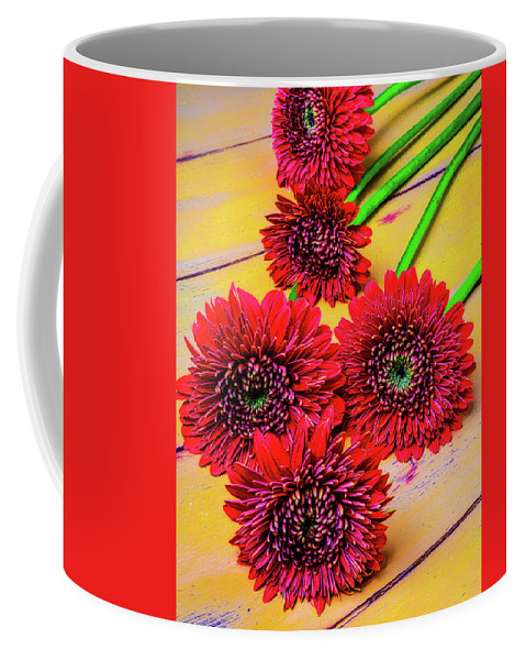 Mood Coffee Mug featuring the photograph Five Red Dasies by Garry Gay