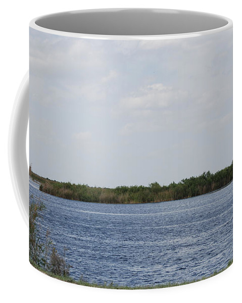 Water Coffee Mug featuring the photograph Fla Everglades by Rob Hans