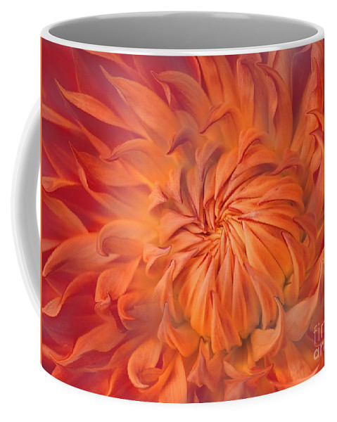 Flower Coffee Mug featuring the photograph Flame by Jacky Gerritsen