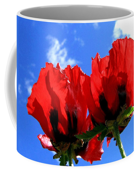 Blue Coffee Mug featuring the photograph Flaming Skies by Will Borden