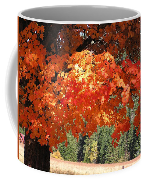 Autumn Photographs Coffee Mug featuring the photograph Flickering Sunlight by Louise Magno