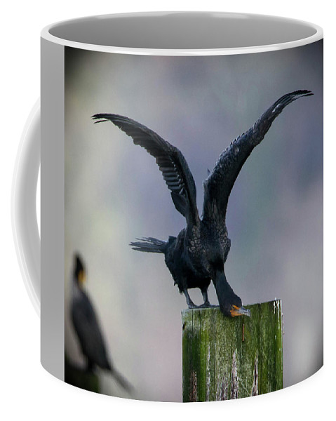 Birds Coffee Mug featuring the photograph Flight Check by James Farrell