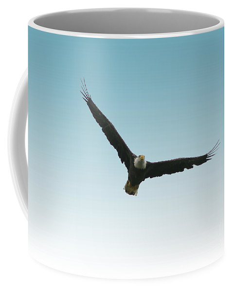 Bird Coffee Mug featuring the photograph Flight Over Lake Carmi by Deborah Benoit