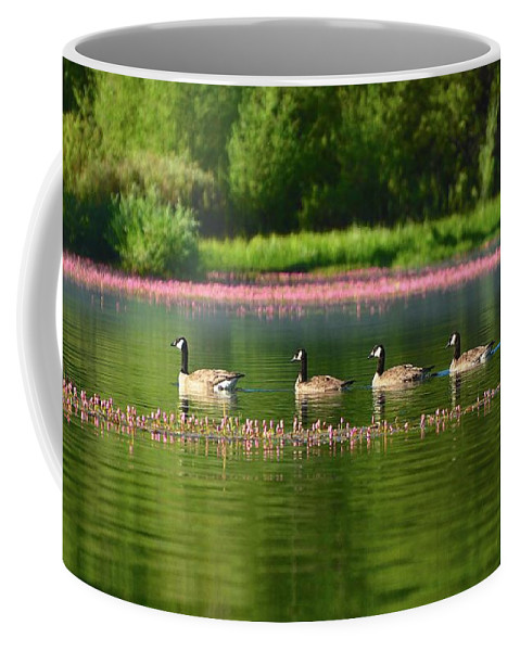 Geese Coffee Mug featuring the photograph Sail by Cher Rydberg