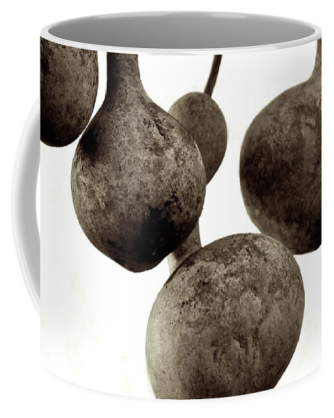 Southwest Coffee Mug featuring the photograph Floating Gourds by Kristina Deane