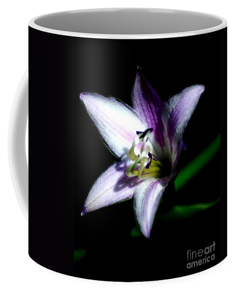 Digital Photograph Coffee Mug featuring the photograph Floral 7-24-09 by David Lane