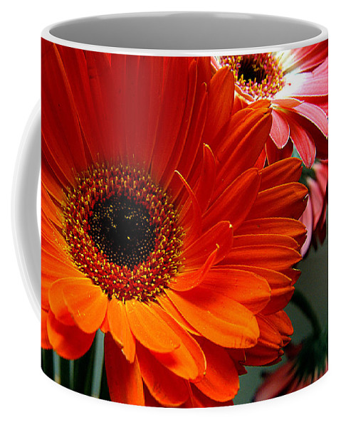 Clay Coffee Mug featuring the photograph Floral Art by Clayton Bruster