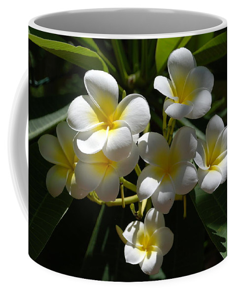 Nature Coffee Mug featuring the photograph Floral Beauties by Rob Hans