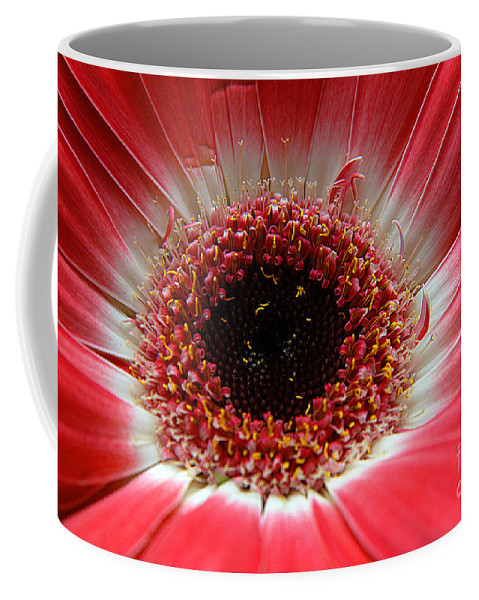Clay Coffee Mug featuring the photograph Floral Eye by Clayton Bruster