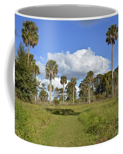 Florida Coffee Mug featuring the photograph Florida At Its Finest by Carol Bradley