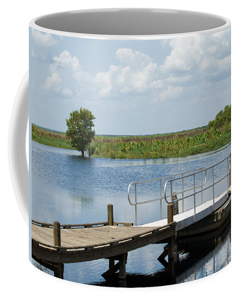 Florida; River; St; Johns; Saint; John; Flow; Flows; North; South;direction; Flowing; Current; Backw Coffee Mug featuring the photograph Florida Backwater by Allan Hughes