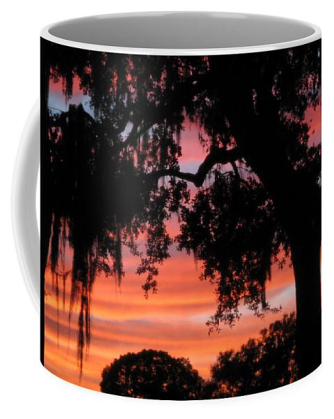 Nature Coffee Mug featuring the photograph Florida Firesky by Peg Urban