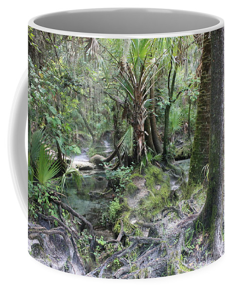 Florida Landscape Coffee Mug featuring the photograph Florida Landscape - Lithia Springs by Carol Groenen