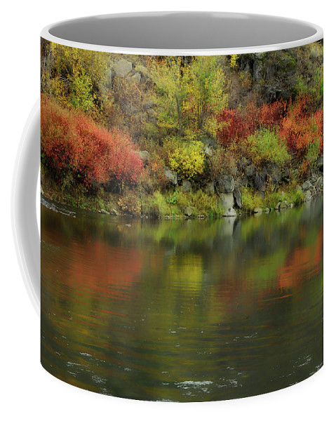 River Coffee Mug featuring the photograph Flow Of Autumn by Donna Blackhall