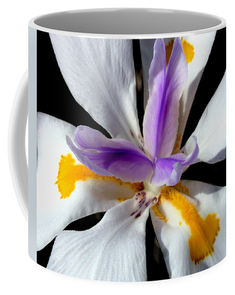 Flowers Coffee Mug featuring the photograph Flower by Anthony Jones