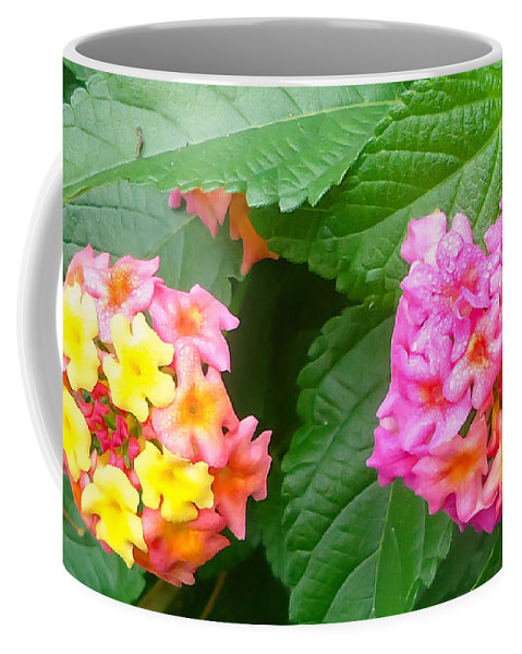 Pat Turner Coffee Mug featuring the photograph Flower Balls by Pat Turner
