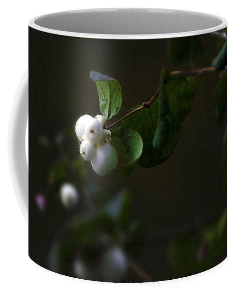 Botanic Coffee Mug featuring the photograph Flower Balls by Svetlana Sewell
