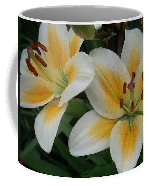 Flower Coffee Mug featuring the photograph Flower Close Up 2 by Anita Burgermeister