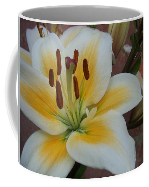 Flower Coffee Mug featuring the photograph Flower Close Up 3 by Anita Burgermeister