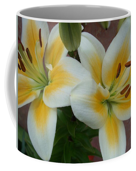 Flower Coffee Mug featuring the photograph Flower Close Up 5 by Anita Burgermeister
