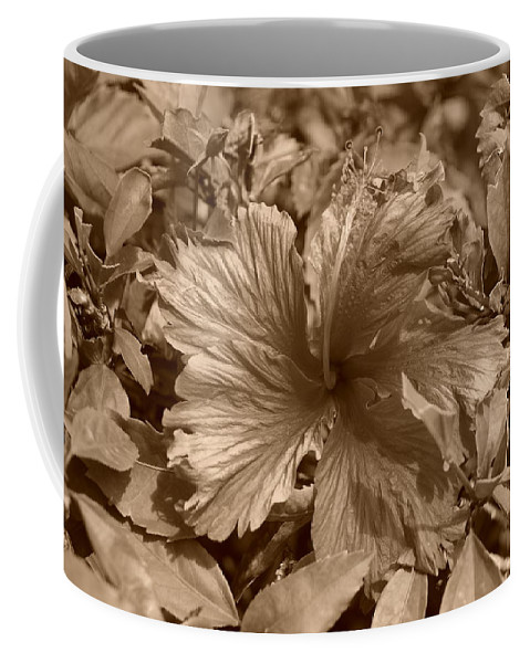 Sepia Coffee Mug featuring the photograph Flower In Sepia by Rob Hans