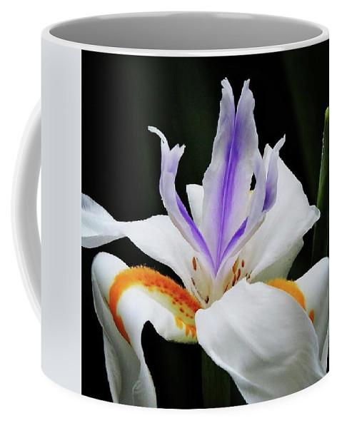 Flower Coffee Mug featuring the photograph Flower by Joseph Hamner