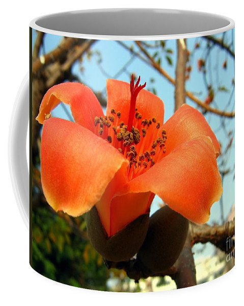 Stamen Coffee Mug featuring the photograph Flower Of The Red Silk Cotton Tree by Yali Shi