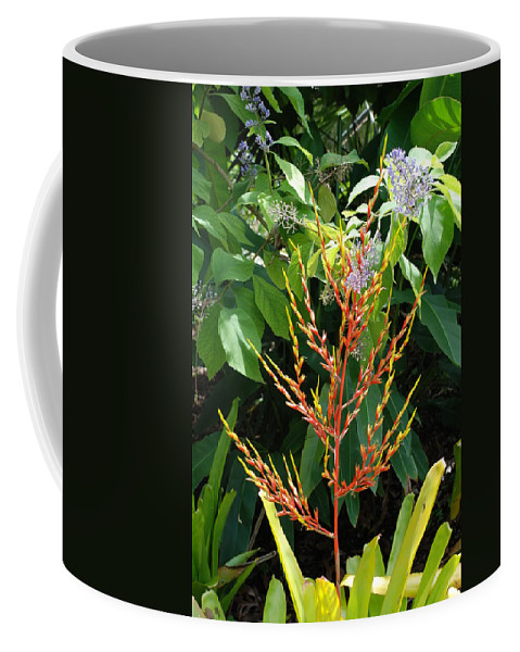 Macro Coffee Mug featuring the photograph Flower Plants by Rob Hans