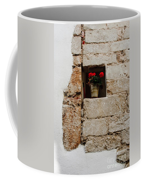 Flower Coffee Mug featuring the photograph Flower Pot In Niche by Thomas Marchessault