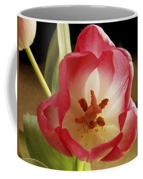 Flowers Coffee Mug featuring the photograph Flower Tulip by Nancy Griswold
