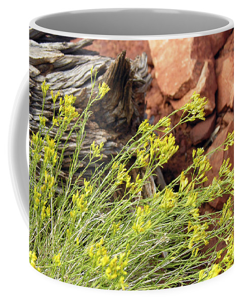 Flower Coffee Mug featuring the photograph Flower Wood And Rock by Marilyn Hunt