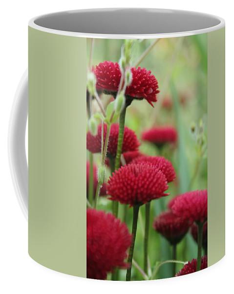 Flower Coffee Mug featuring the photograph Flower1 by Angela Hansen