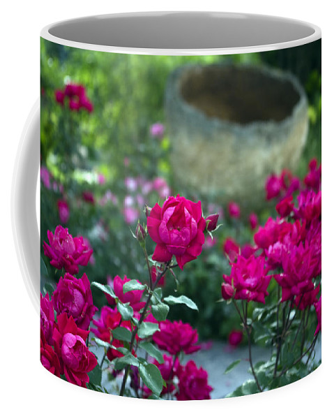 Flowers Coffee Mug featuring the photograph Flowering Landscape by Scott Wyatt