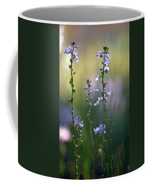 Nature Coffee Mug featuring the photograph Flowers By The Pond by Robert Meanor