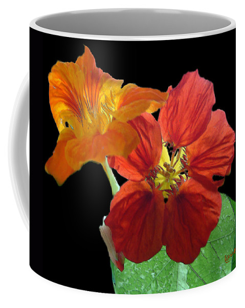 Nasturtiums Coffee Mug featuring the painting Flowers For Ebie by RC deWinter
