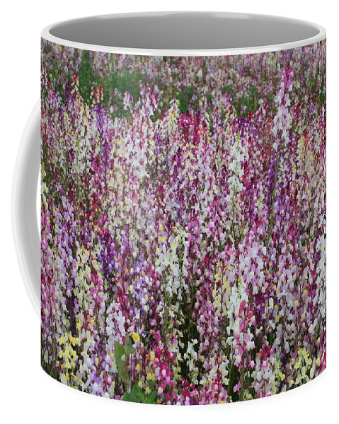 Field Of Flowers Coffee Mug featuring the photograph Flowers Forever by Carol Groenen