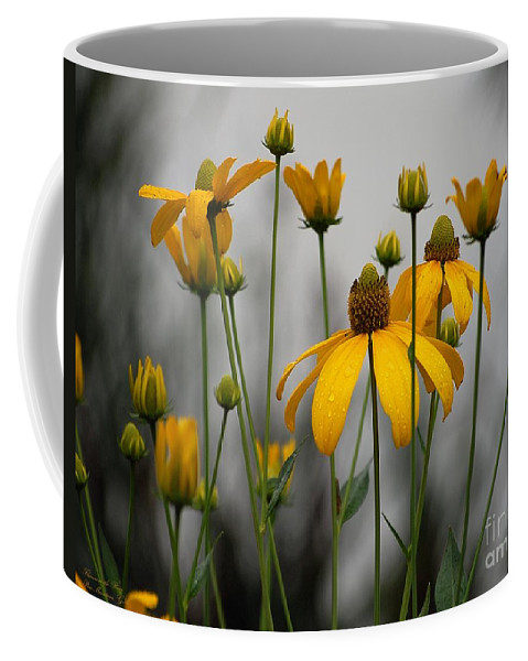 Flowers Coffee Mug featuring the photograph Flowers In The Rain by Robert Meanor
