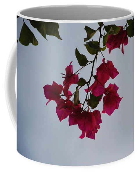 Flowers Coffee Mug featuring the photograph Flowers In The Sky by Rob Hans