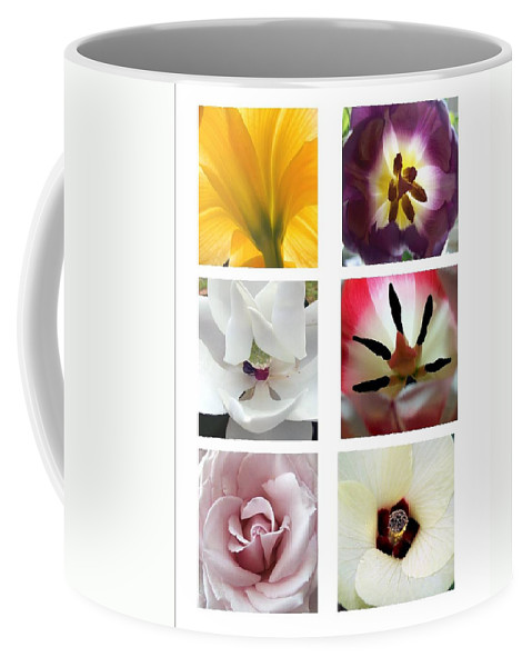 Flowers Coffee Mug featuring the photograph Flowers In The Yard by Robert Meanor