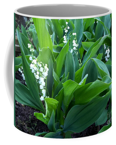Lilly Of The Valley Coffee Mug featuring the photograph Flowers Of Hapiness by Augustus Gallia