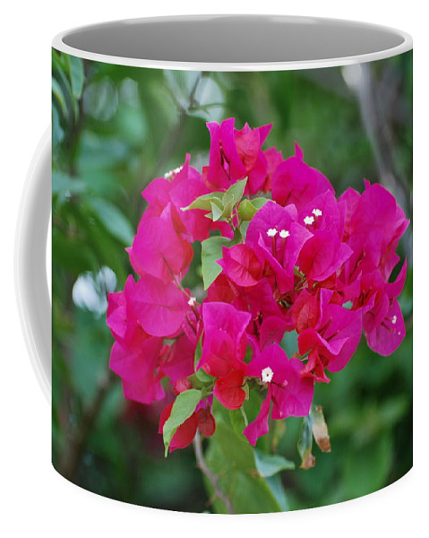 Flowers Coffee Mug featuring the photograph Flowers by Rob Hans