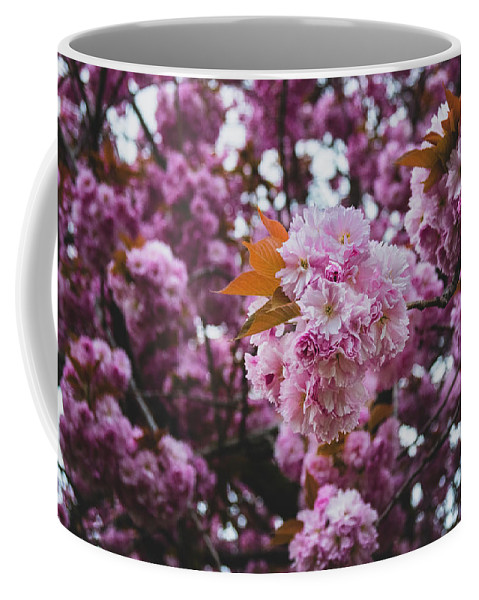 Flowers Coffee Mug featuring the photograph Leeds Pink Flower by Ryan Jowitt