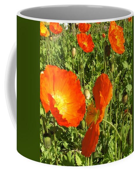 Flowers Coffee Mug featuring the photograph Flowers by Shari Chavira