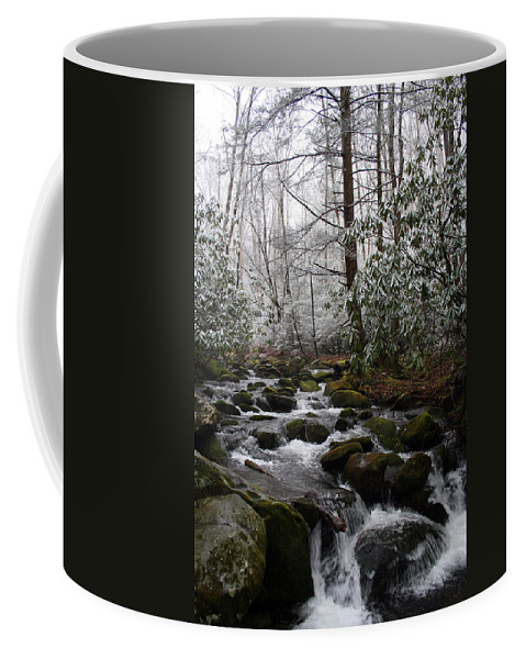 Park Winter Snow White Water Stream Creek Flow River Rock Boulder Tree Green Rush Cold National Coffee Mug featuring the photograph Flowing by Andrei Shliakhau
