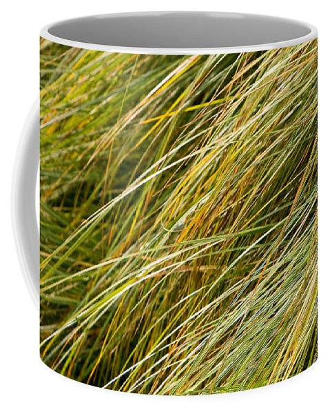Abstract Coffee Mug featuring the photograph Flowing Green Grass Abstract by James BO Insogna