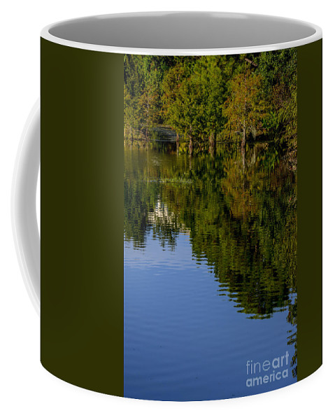 Trees Coffee Mug featuring the photograph Flowing Reflection by Amanda Sinco